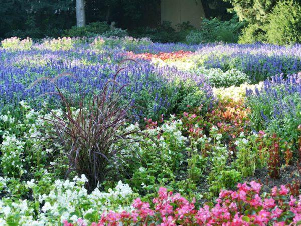 164-Blumengarten-im-Stadtpark